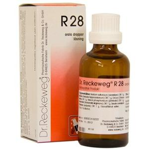 Dr. Reckeweg R 28 - 50 ml