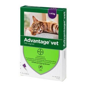 Advantage pour-on Vet kat, 4-8 kg